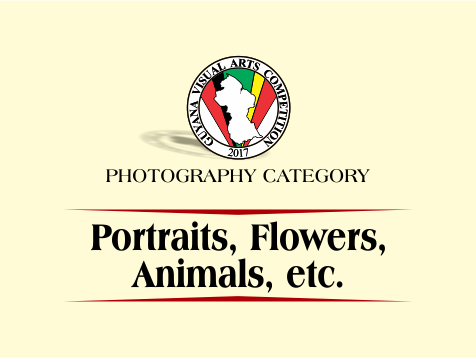 2017 - post - portraits